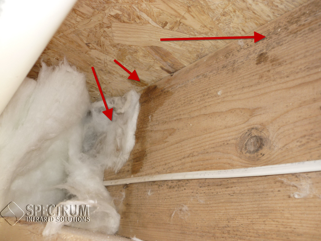 Insulation energy audit. The basement at the rim joist ... & Blog - Commercial and Home Inspection Energy Efficiency Equine ...